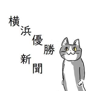 \横浜優勝新聞/ Hamakko dello sport