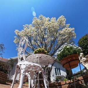 ヨーロピアンな家とレンガの庭