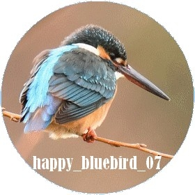 青い鳥みっけ