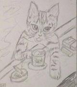 老猫街ある記・食べある記