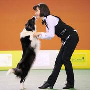 Dance with Dogs:ドッグダンスとトレーニングのブログ