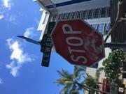 ハワイにはまった女子っぽい男のブログ