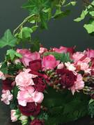 お花のある生活*Blanc et Vert*