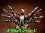 妖鳥マサコージさんのプロフィール
