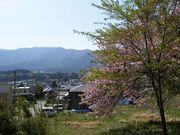 辰野町を中心に伊那谷、諏訪湖周辺地域の情報
