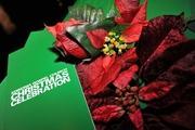 CHRISTMAS CELEBRATION 2015