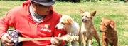 愛犬たちと暮らす南国暮らし