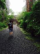 御朱印神社巡り‥関東
