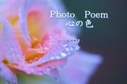 Photo Poem 心の色