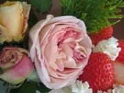 薔薇つくりは庭つくり