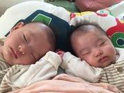 二卵性双子boys と 双子白黒にゃんず な 日々