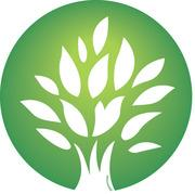 樹のひかり形成外科・皮ふ科医療美容ブログ