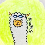 saori(あるぱか)さんのプロフィール