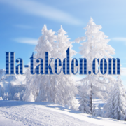Ha-takeden.com