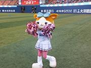 アラサー野球女子の育児日記〜H28.6月出産しました〜