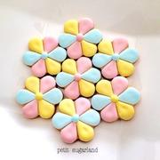 福井 お菓子教室 petit sugarland