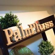 西宮市甲子園口 Palm pluss(パームプラス)