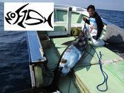 TEAM NO FISH ~ガイティのブログ~