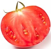 トマトニュース