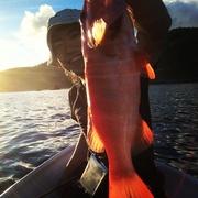 タコス時々、釣り。