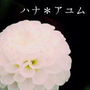ハナ*アユム Handmade Diary
