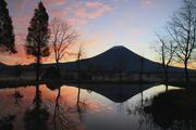 Trip Photography Japan