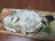 魚菜の料理ブログ