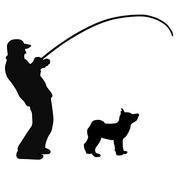 柴犬生活で心が満たされるブログ