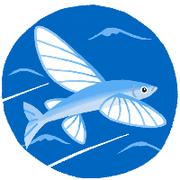 南雲飛魚さんのプロフィール