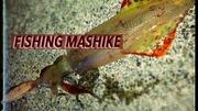 MASHIKE FISHING