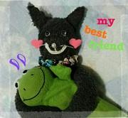 どら猫ミイコのブログ