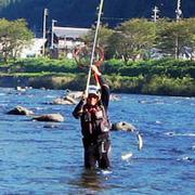 気ままな釣り師のTea room〔blog〕