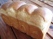 手づくりパン教室 こち舎