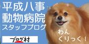 平成八事動物病院 スタッフブログ