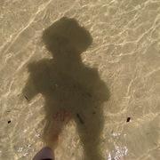 家族でシドニー生活:備忘録