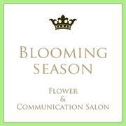 世田谷桜新町 Blooming Season