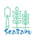 SeaBaku Camp