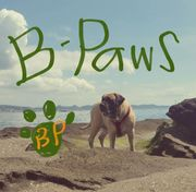 B-Paws 犬と人。
