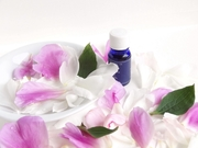 敏感肌大人にきびの基礎化粧品の選び方