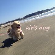 air's dog!
