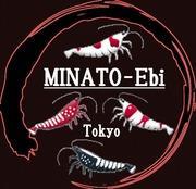 MINATO-Ebi〜レッドビー&ナナシー