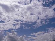 心の風に吹かれて〜白い雲のように〜