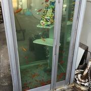 金魚の町で暮らすテキトーママの戯言
