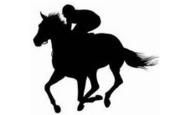 競馬革命−驚異の的中率