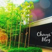 シェビーズのブログ