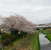 愛知県日進市からお得を探す