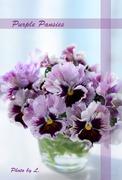 花が好き!!