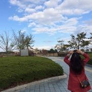 ぴんちのブログ