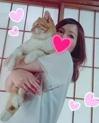 ネコ好き秋田の村民( ΦωΦ )まりmamaLife♡