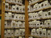 パリの薬草店で働く薬剤師のブログ